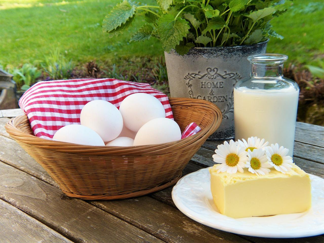 卵 乳製品